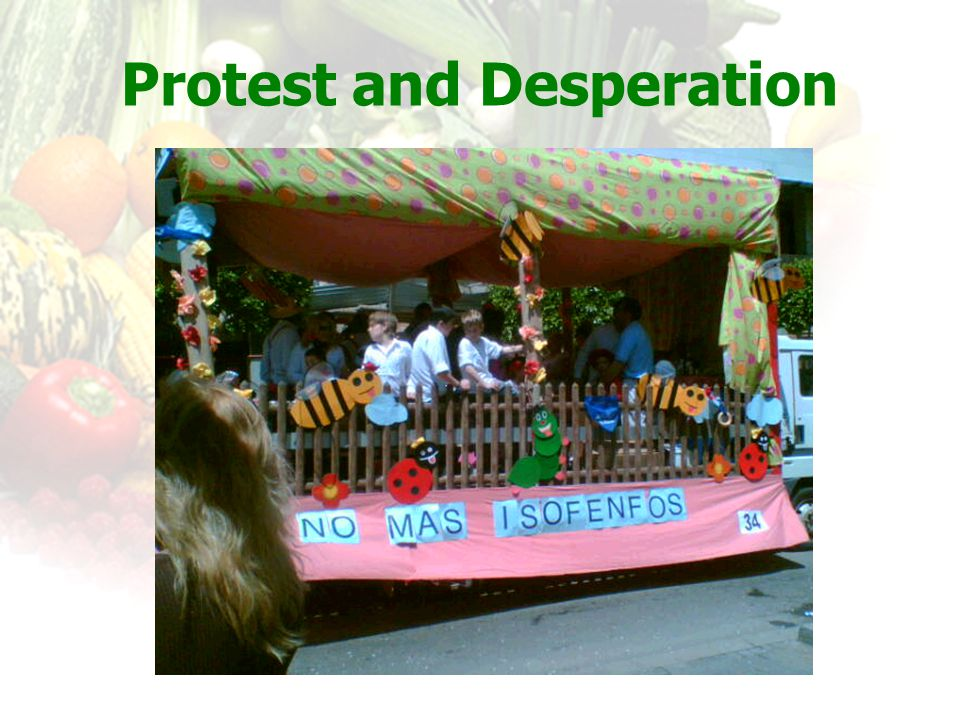 Protest and Desperation
