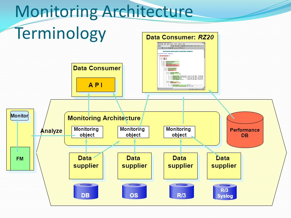 Monitoring Architecture Terminology