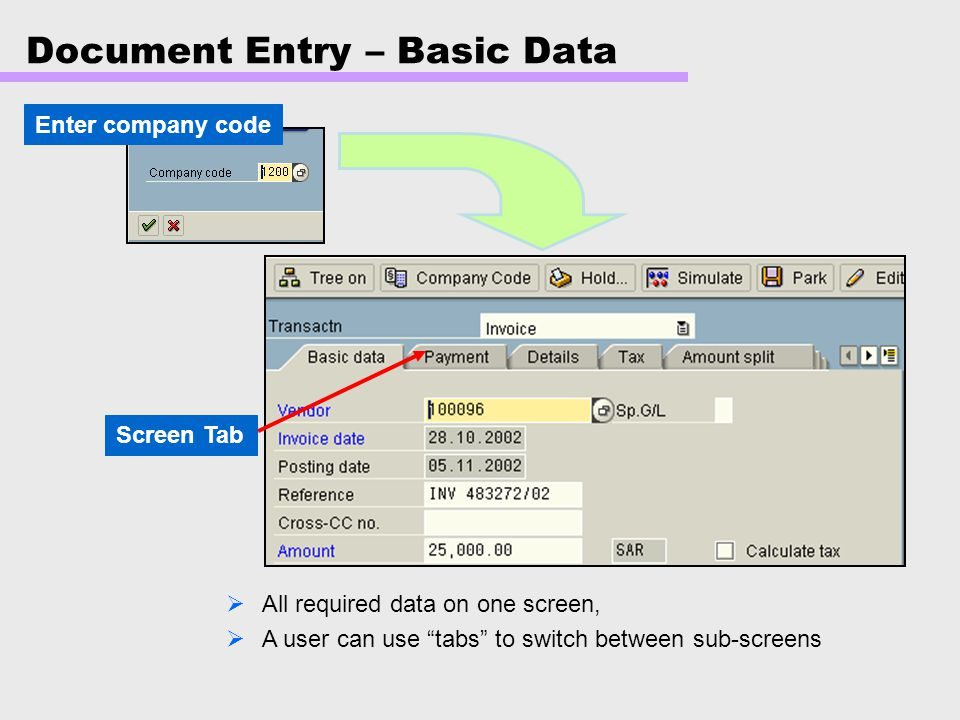 Document Entry – Basic Data