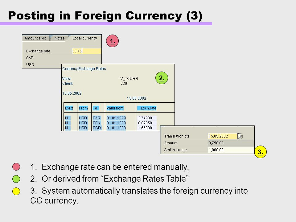 Posting in Foreign Currency (3)