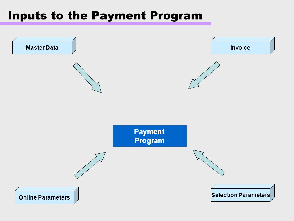 Inputs to the Payment Program