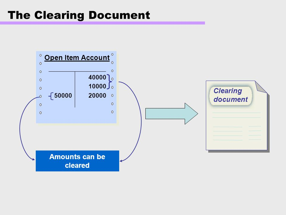 The Clearing Document Open Item Account Clearing document