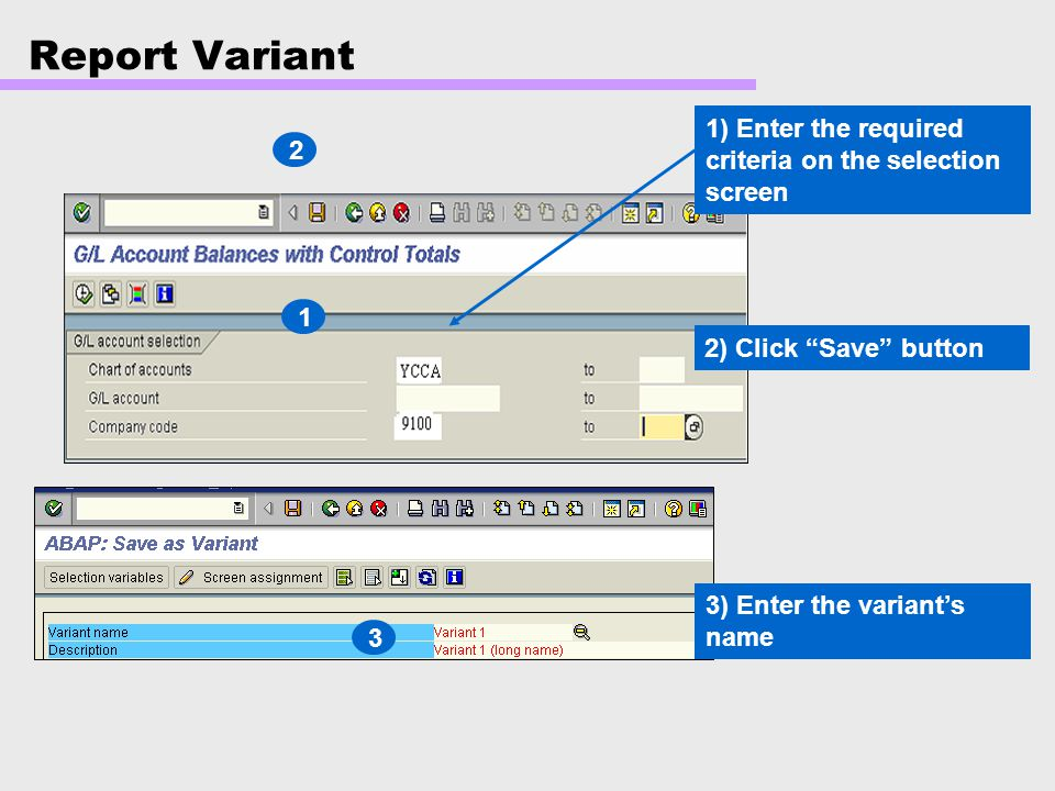 Report Variant 1) Enter the required criteria on the selection screen