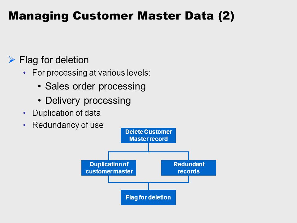 Managing Customer Master Data (2)