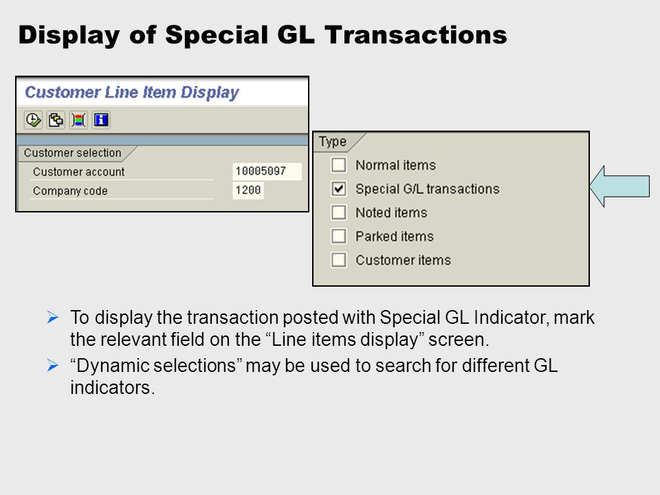 Display of Special GL Transactions