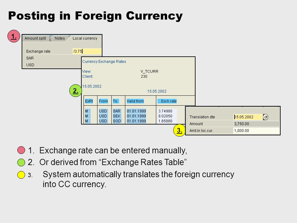 Posting in Foreign Currency