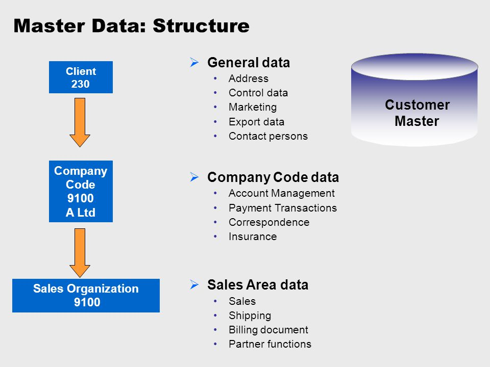 Master Data: Structure