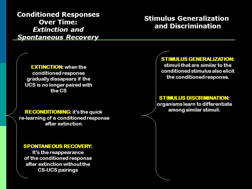 Conditioned Responses Over Time: Extinction and Spontaneous Recovery