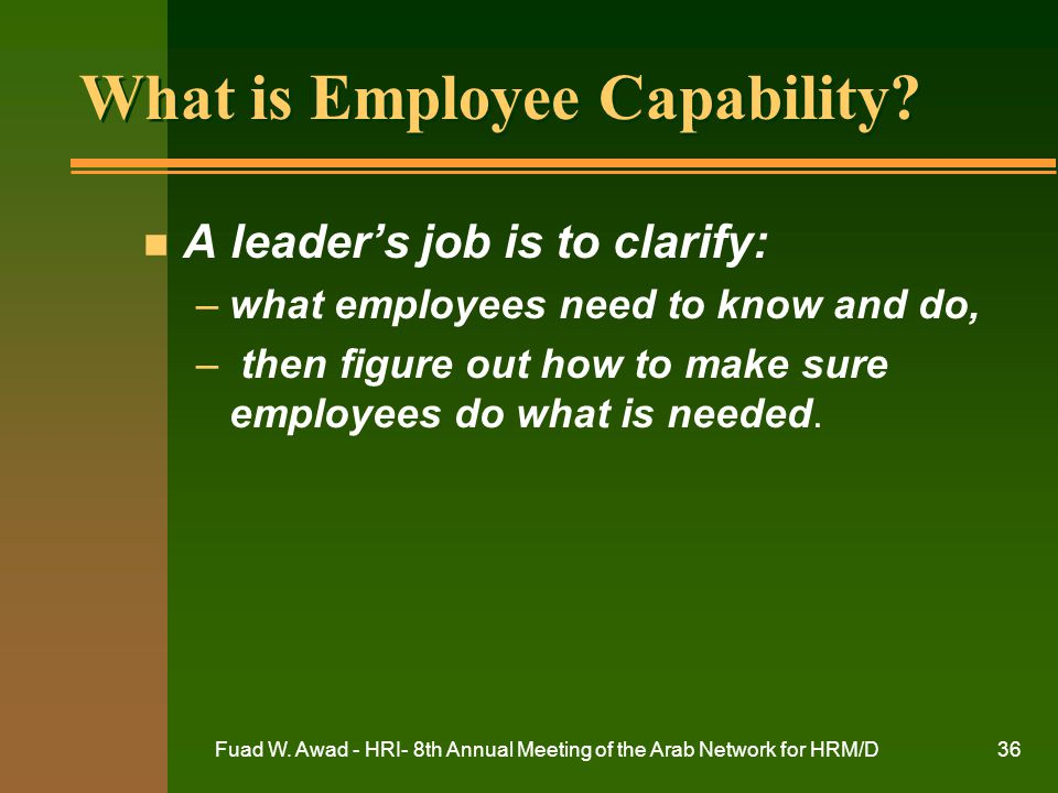 What is Employee Capability