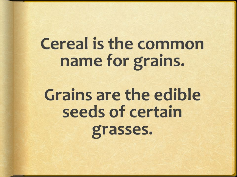 Cereal is the common name for grains