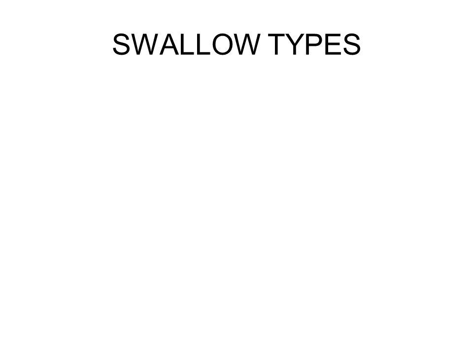 SWALLOW TYPES