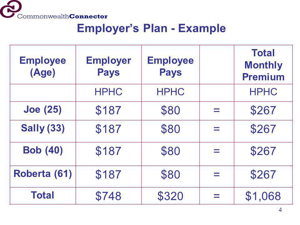 Employer's Plan - Example