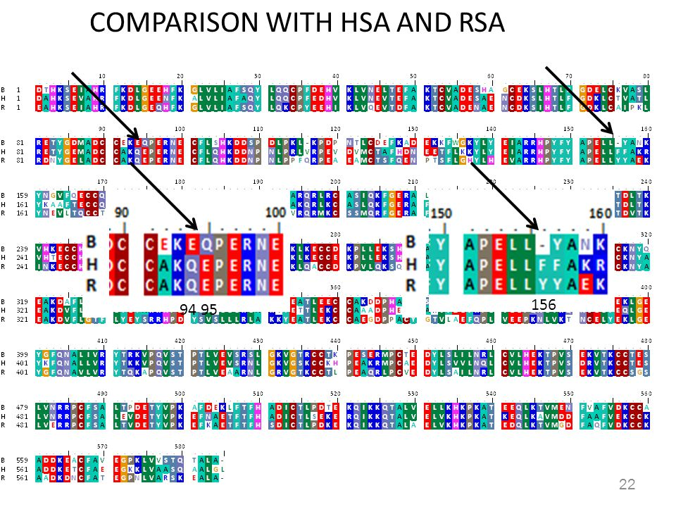 COMPARISON WITH HSA AND RSA