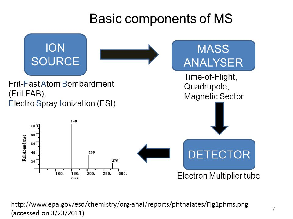 Basic components of MS ION SOURCE MASS ANALYSER DETECTOR