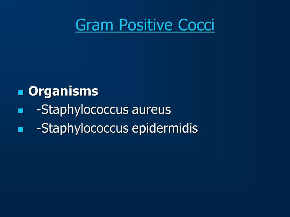 Gram Positive Cocci Organisms -Staphylococcus aureus