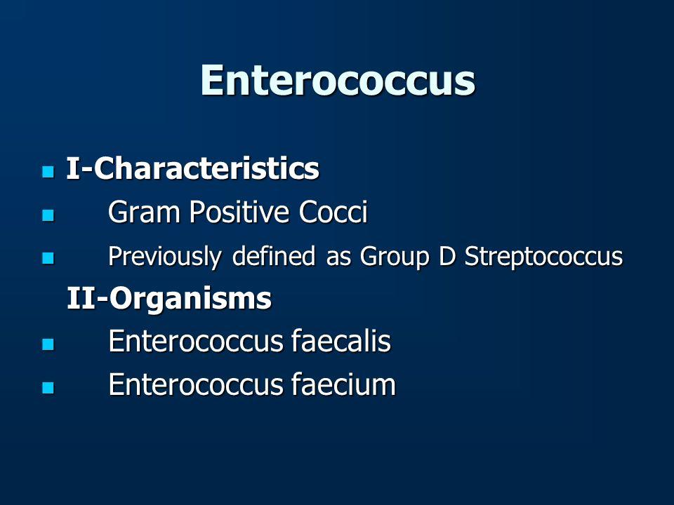 Enterococcus I-Characteristics Gram Positive Cocci