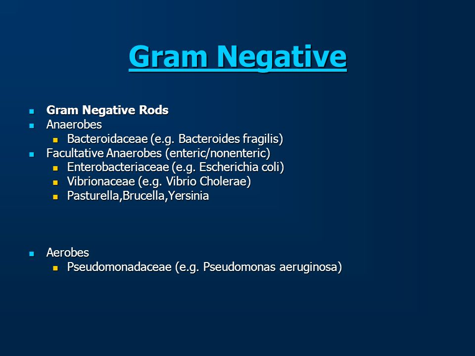 Gram Negative Gram Negative Rods Anaerobes