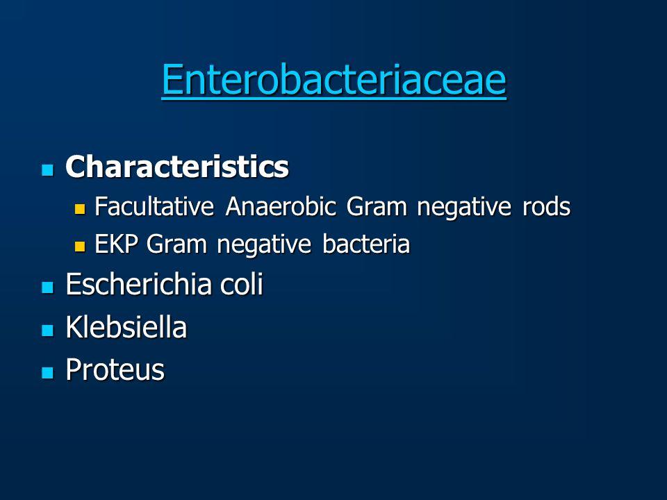 Enterobacteriaceae Characteristics Escherichia coli Klebsiella Proteus
