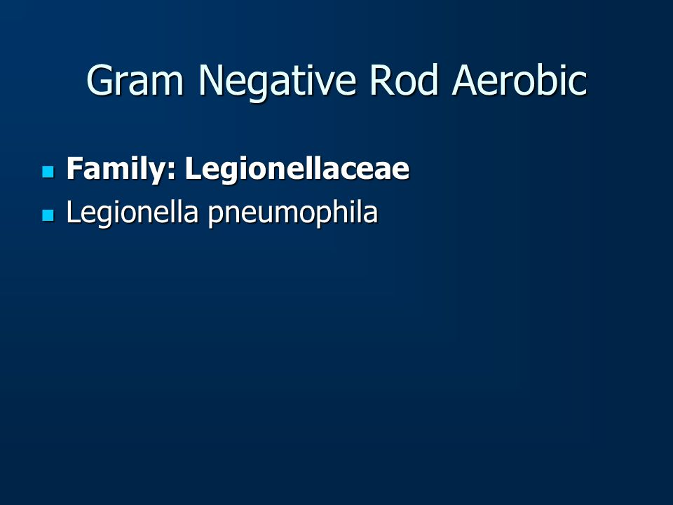Gram Negative Rod Aerobic