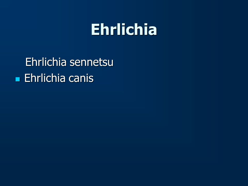 Ehrlichia Ehrlichia sennetsu Ehrlichia canis