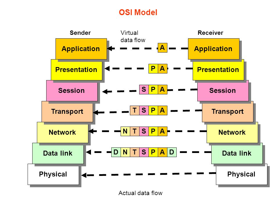 OSI Model Application Application A Presentation Presentation P A