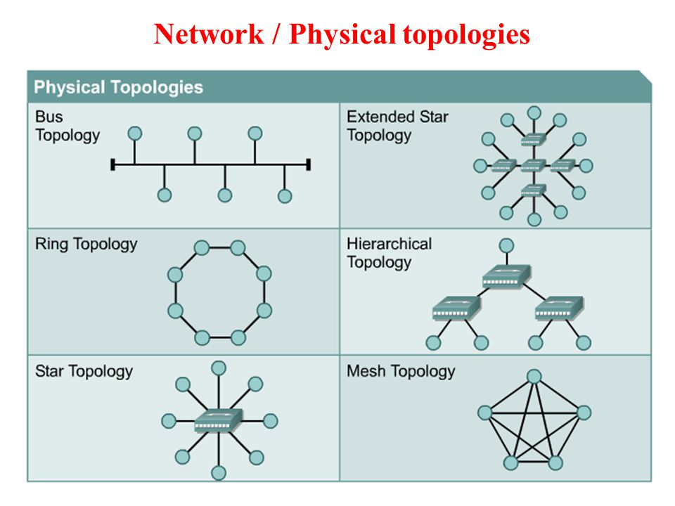 Network / Physical topologies