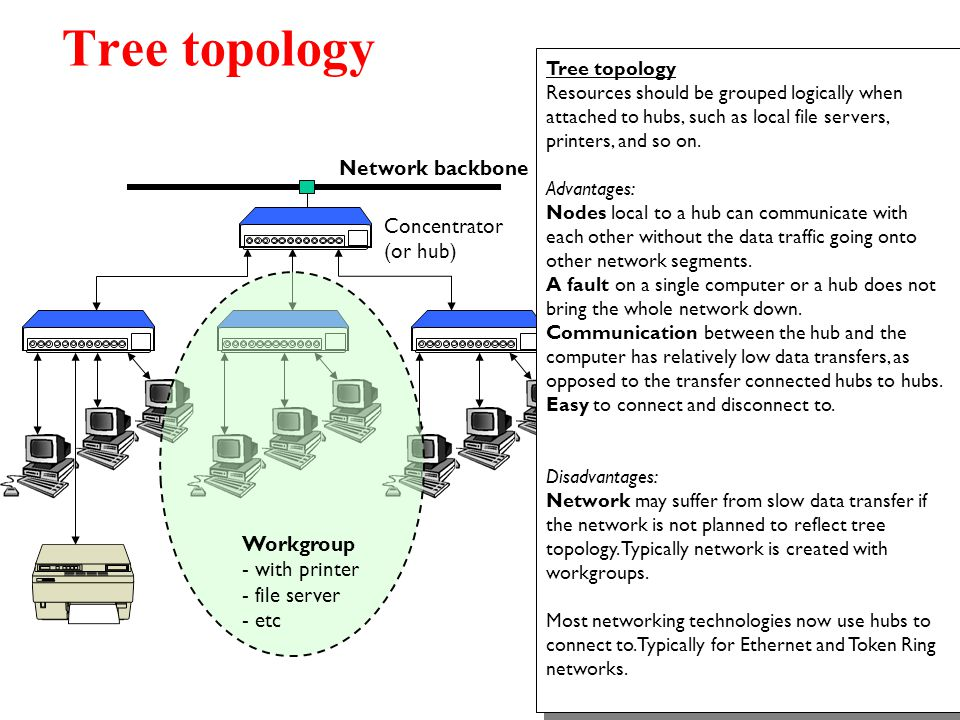 Tree topology Network backbone Concentrator (or hub) Workgroup