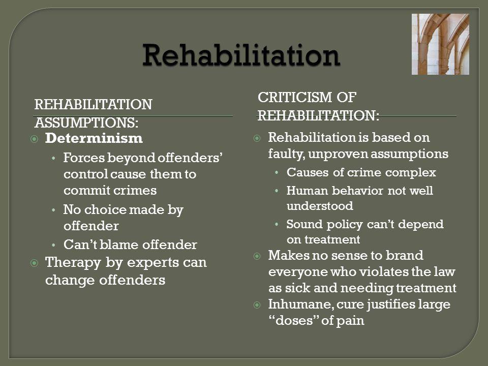 Rehabilitation Criticism of Rehabilitation: