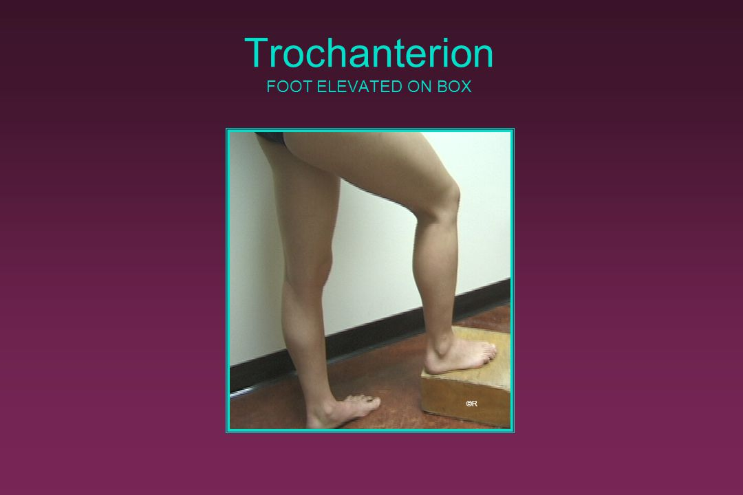 Trochanterion FOOT ELEVATED ON BOX