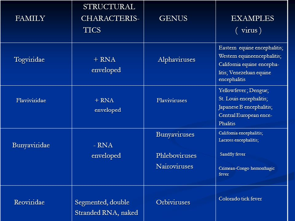 FAMILY STRUCTURAL CHARACTERIS- TICS GENUS EXAMPLES ( virus )