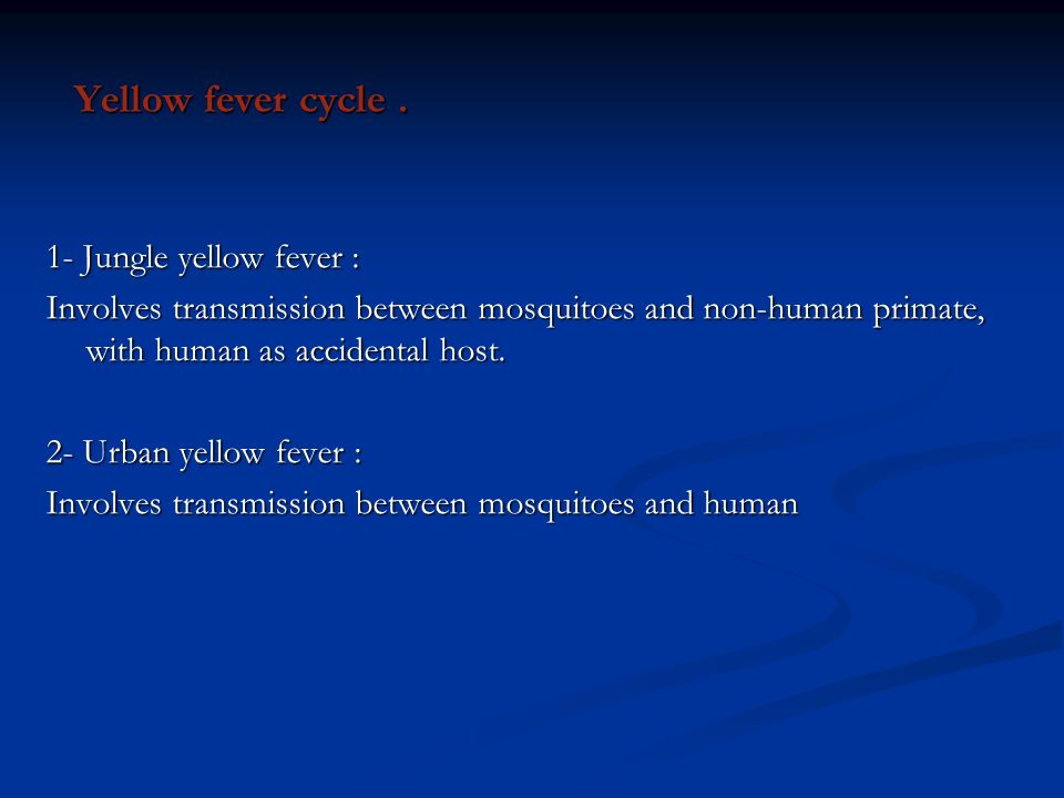 Yellow fever cycle . 1- Jungle yellow fever :