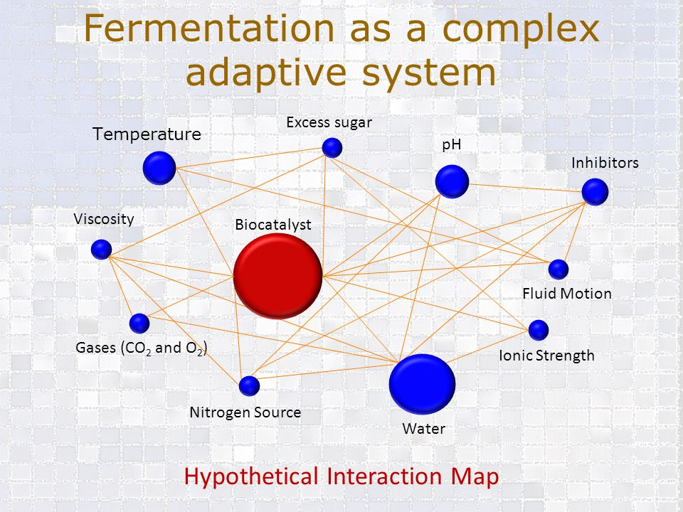 Fermentation as a complex adaptive system