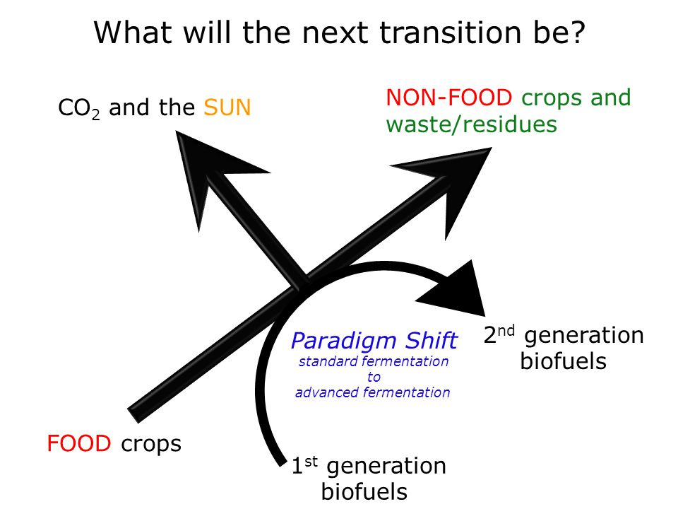 What will the next transition be