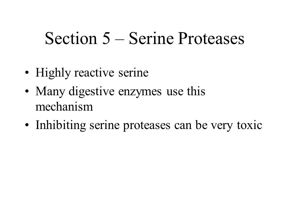 Section 5 – Serine Proteases