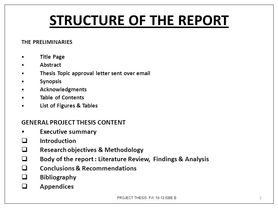 STRUCTURE OF THE REPORT