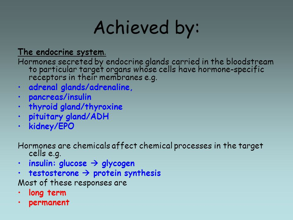 Achieved by: The endocrine system.