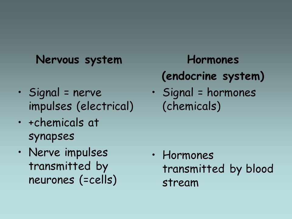 Nervous system Signal = nerve impulses (electrical) +chemicals at synapses. Nerve impulses transmitted by neurones (=cells)