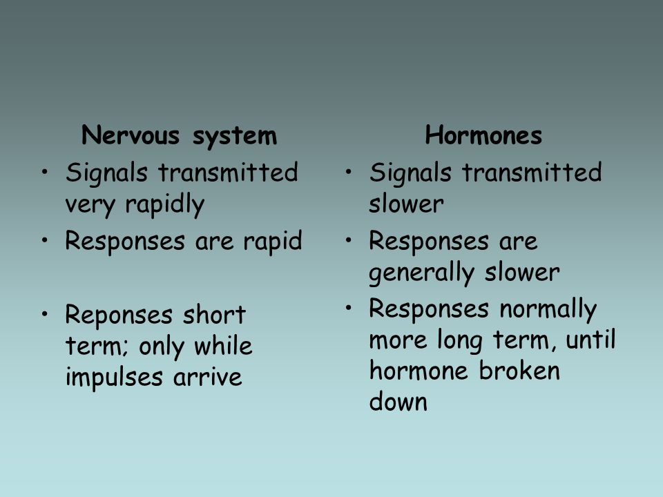 Nervous system Signals transmitted very rapidly. Responses are rapid. Reponses short term; only while impulses arrive.