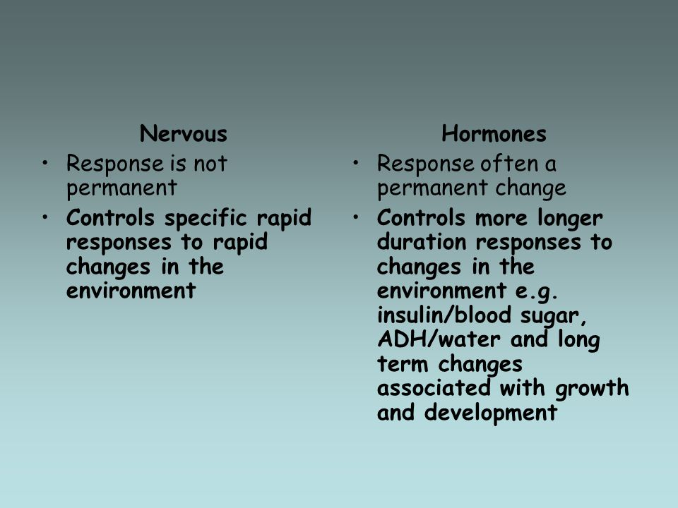 Nervous Response is not permanent. Controls specific rapid responses to rapid changes in the environment.