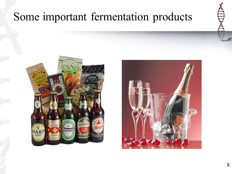 Some important fermentation products
