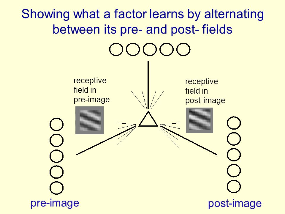 Showing what a factor learns by alternating between its pre- and post- fields