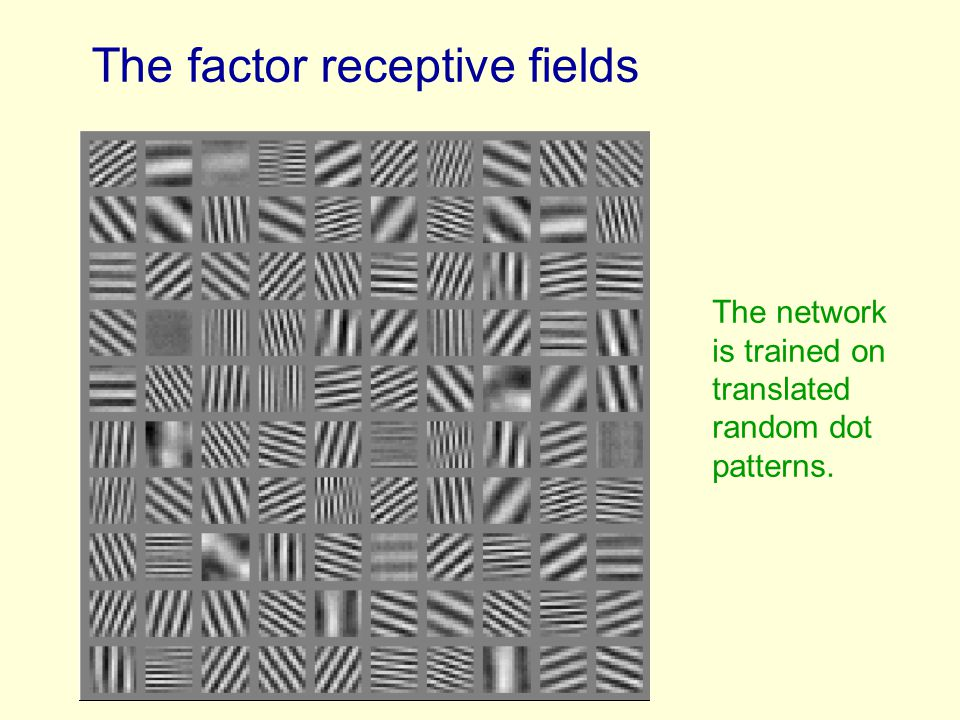 The factor receptive fields