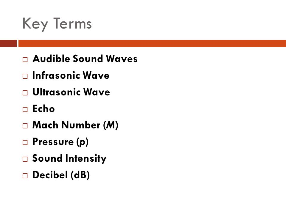 Key Terms Audible Sound Waves Infrasonic Wave Ultrasonic Wave Echo