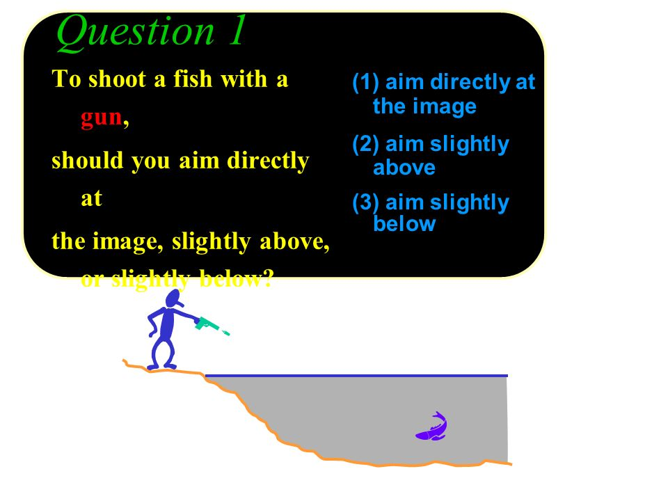 Question 1 To shoot a fish with a gun, should you aim directly at