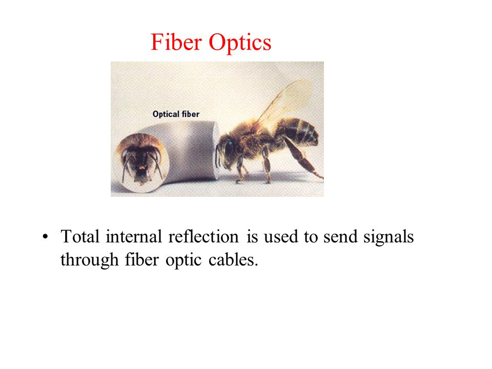 Fiber Optics Total internal reflection is used to send signals through fiber optic cables.