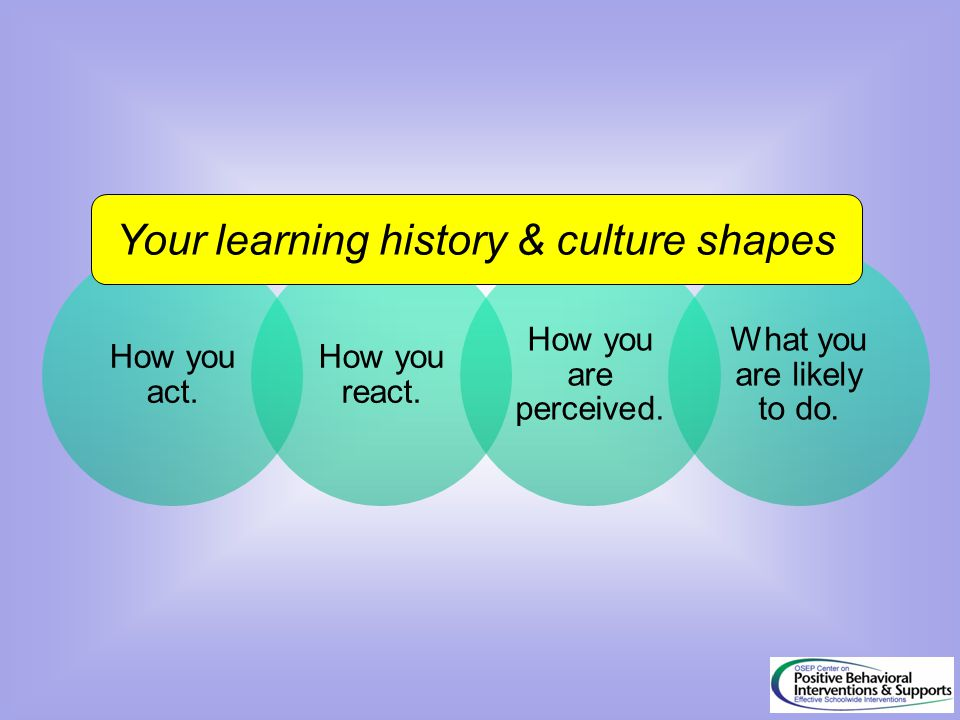 Your learning history & culture shapes