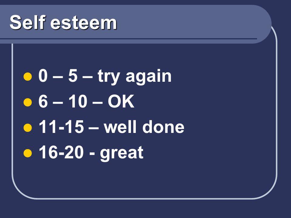 Self esteem 0 – 5 – try again 6 – 10 – OK 11-15 – well done