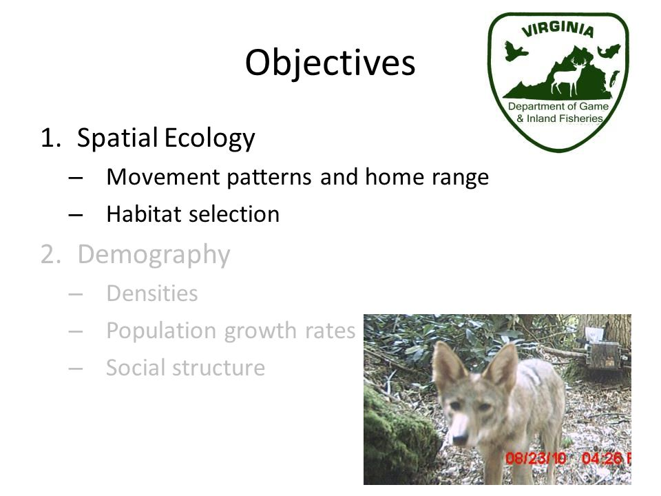 Objectives Spatial Ecology Demography Movement patterns and home range