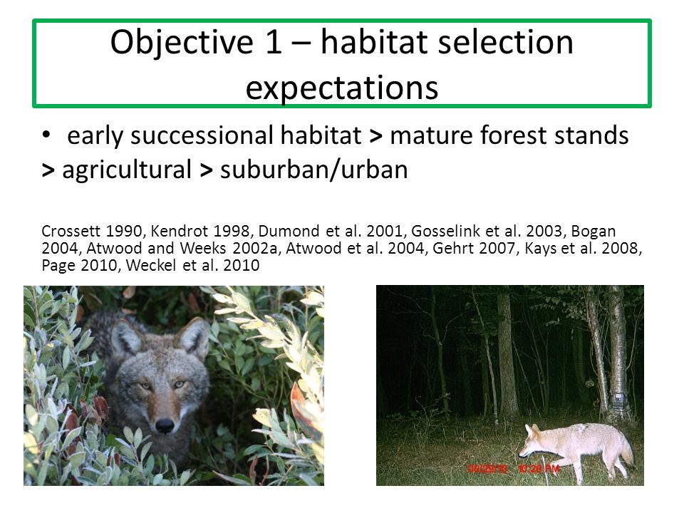 Objective 1 – habitat selection expectations