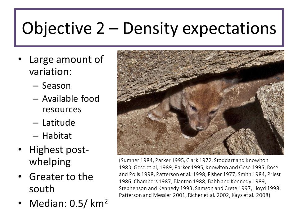 Objective 2 – Density expectations